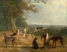 Nine Greyhounds ~ Dogs ~ Counted Cross Stitch Pattern