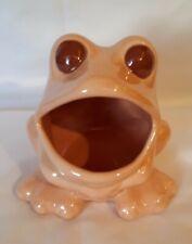 Vintage Frog Scrubby Sponge Holder Ceramic retro 70s Nice