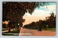 Pasadena CA, Orange Grove Avenue, Millionaire Vintage California c1922 Postcard