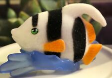 Jungle Ocean Sea in My Pocket—Angelfish, Bethany