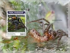 Mozambique - 2019 Spiders on Stamps - Stamp Souvenir Sheet - MOZ190414b