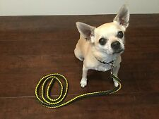 5 Ft Paracord Dog Leash Green Bay Packers Wisconsin Cheesehead UBUleashes