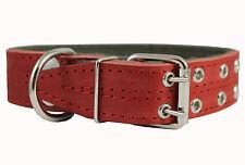 "Real Leather Dog Collar Padded 1.5"" Wide  22.5""-26.5"" neck size Mastiff Doberman"
