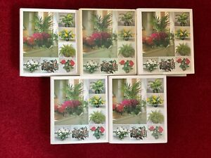Success with House Plants Folders x 5 with Cards / Information Sheets x 972