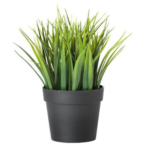 Ikea Artificial Potted Plant, Wheat Grass, 7.75 Inch COMINHKR077830