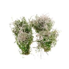 4x 2.56inch/6.5cm Ground Cover Flower Model White for Diorama Scenery Prop