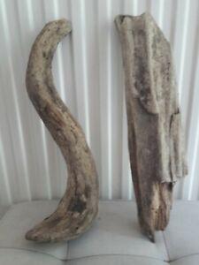 Driftwood Pieces