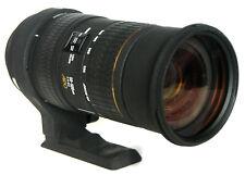For Nikon - SIGMA EX APO HSM DG 50-500 mm F/4.5-6.3 + Hood Caps Case Filter