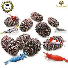 SunGrow 50 Pesticide-Free Alder Cone:For Shrimps & Aquarium Acidic loving Animal