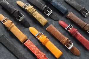 Polished Stingray Watch Strap Multiple Sizes & Colours