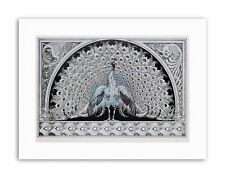 NOUVEAU GRAPHIC ORNATE PEACOCK PLUME DESIGN Painting Canvas art Prints