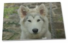 A Pretty Siberian Husky Puppy Dog Extra Large Toughened Glass Cuttin, AD-GL1GCBL