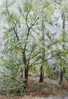Original watercolor Painting landscape Forest Tree autumn etude