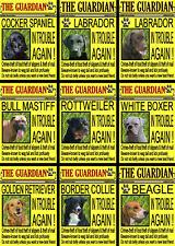 VARIOUS BREEDS NOVELTY DOG SIGN (FRONT PAGE) Set A