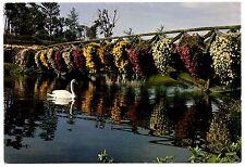 Mobile Alabama Bellingrath Gardens Home Postcard Swan Chrysanthemums Mirror Lake