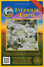 2000 Mountain Mint Wildflower Seeds - Everwilde Farms Mylar Seed Packet