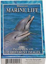 Discover Marine Life Conjunto De 52 Jugar Tarjetas + Bromistas ( Sts )