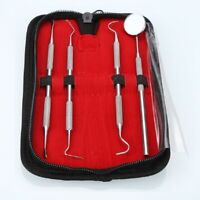 4 PCS DENTAL TOOTH PICK PROBE SET KIT TEETH CLEAN HYGIENE TOOLS STAINLESS STEEL