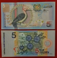 Suriname - 5 Gulden (P - 146) ISSUED 2000 - Beautiful Woodpecker  UNC