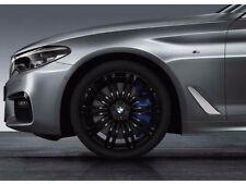 BMW Serie 5 G30 G31 M Rayo DOBLE 664m Juego de ruedas completo de invierno