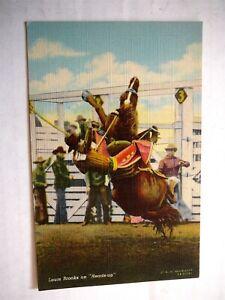 VINTAGE 1940s RODEO COLOR LINEN POSTCARD - LOUIS BROOKS on HEADS UP - DOUBLEDAY