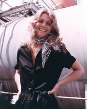 Wagner, Lindsay [The Bionic Woman] (33513) 8x10 Photo