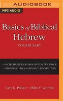 Basics of Biblical Hebrew Vocabulary (MP3)