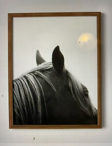 "16"" x 20"" Horse Framed Print - Threshold - Ships FREE"