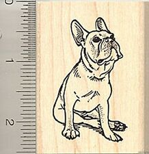 French bulldog Rubber Stamp H8014 Wood Mounted dog