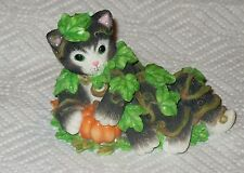 "L@@K  CALICO KITTENS "" DON'T BE A SCAREDY CAT ""  MNB"