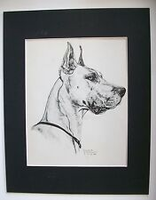 Great Dane Profile Dog Print Gladys Emerson Cook Bookplate 1945 11x14 Matted