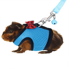 6Rypet Guinea Pig Harness,Padded Vest for Guinea Pigs,Ferret,and Similar Animals