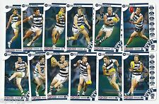 2013 Teamcoach GEELONG Team Set