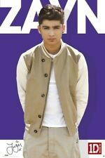 One Direction ~ Zayn Malik Color Pose 24x36 Music Poster