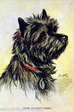 1930's~Dark Coated Cairn Terrier Dog Side Portrait~ New Large Note Cards