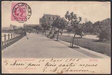 Alte Postkarte 1905 DURBAN PORT NATAL Südafrika nach Wien