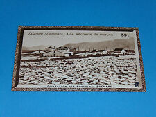 CHROMO PHOTO CHOCOLAT SUCHARD 1934 EUROPE ISLAND ISLANDE SECHERIE MORUES