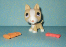 Littlest Pet Shop #860 Tan Cream White Bull Terrier Puppy Dog Lps Purple Eyes Hf