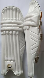 WS Player Edition Cricket Batting PADS