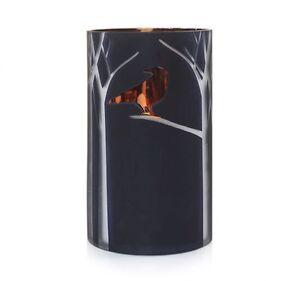 YANKEE CANDLE RAVEN NIGHT BLACK JAR CANDLE HOLDER NEW HALLOWEEN RETIRED