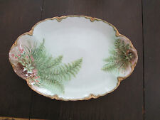 UNBELIEVABLE Hand Painted Haviland (limoges) Platter dated 1903!
