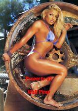 TRISH STRATUS WWE WCW WWF DIVAS Poster Print 24x36 WALL Photo 7