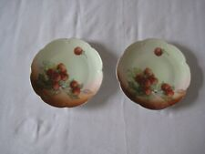 A pair of vintage porcelain plates depicting strawberries, probably 1930s