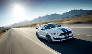 Ford Mustang Cobra Sun Desert High-Quality 22inx17in Art Poster