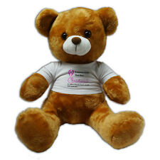 "Personalised Any Name Christened Gift 12"" Teddy Bear - Pink"