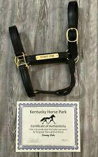 FUNNY CIDE Worn Horse Racing Halter 2003 KENTUCKY DERBY / PREAKNESS CHAMPION