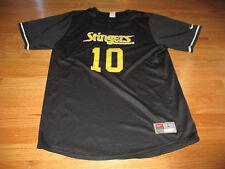 Vintage Nike CHICAGO STINGERS No. 10 Indoor / Outdoor Soccer (LG) Jersey