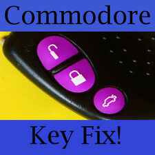 Holden Commodore Key Buttons VS VT VX VY VZ Purple Set