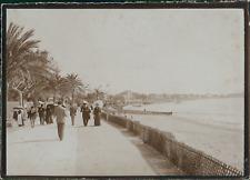France, Cannes, Promenade de la Croisette, ca.1900, Vintage citrate print Vintag