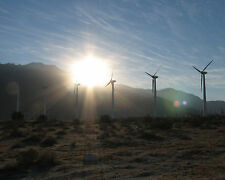 Beautiful 8X10 Photograph Of Windmills Near Palm Springs California